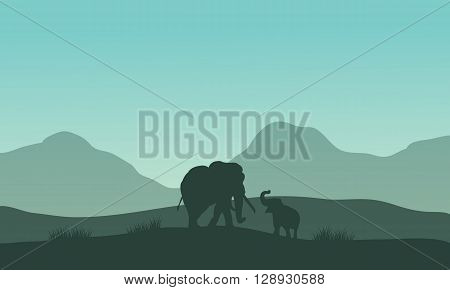 Elephant silhouette in fields with fog at morning