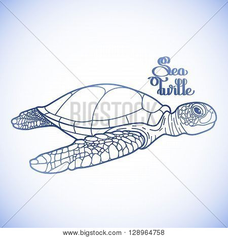 Graphic Hawksbill sea turtle drawn in line art style. Ocean vector creature in blue colors isolated on white background. Side view. Coloring book page design
