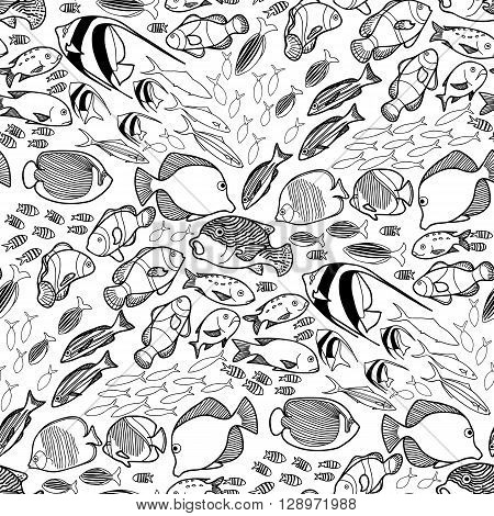 Collection of  ocean fish drawn in line art style on white background. Vector seamless pattern. Coloring page design.
