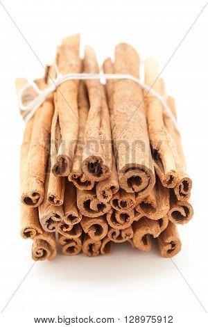 Top front view of Raw Organic Cinnamon sticks (Cinnamomum verum) bundle tied up with thread.