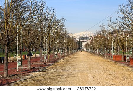Long Avenue In The Public Park Called Campo Marzo In Vicenza, Italy