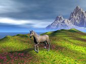 a horse walking on a meadow. rendered with bryce 6 poster