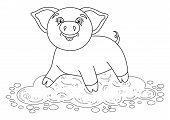 Vector illustration of cute pig in a puddle, funny piggy standing on dirt puddle, coloring book page for children poster
