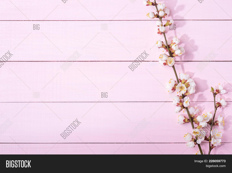 Light Pink Wooden Powerpoint Template Light Pink Wooden Powerpoint