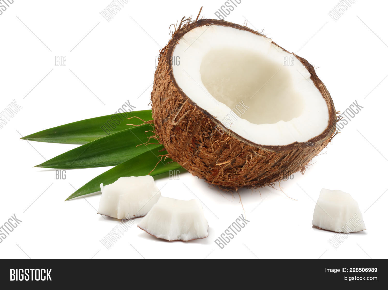 coconut with green powerpoint template coconut with green