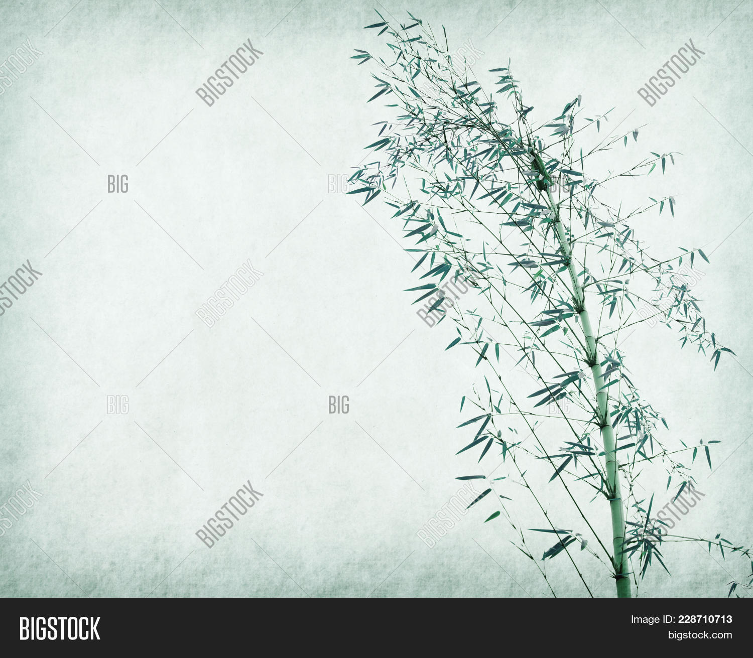 branches of a bamboo powerpoint template powerpoint template