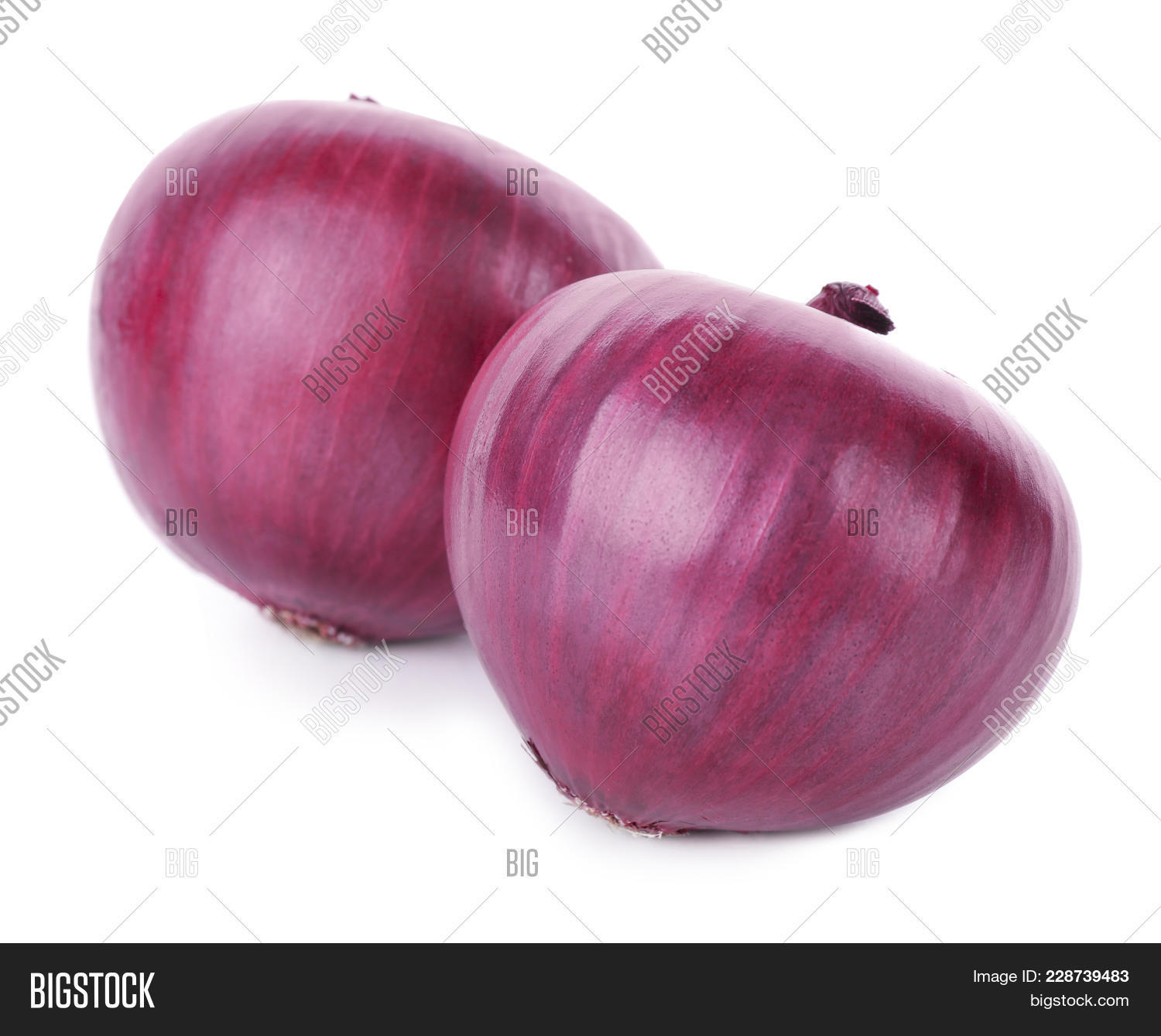Autumn White Red Onion Powerpoint Template Autumn White Red Onion