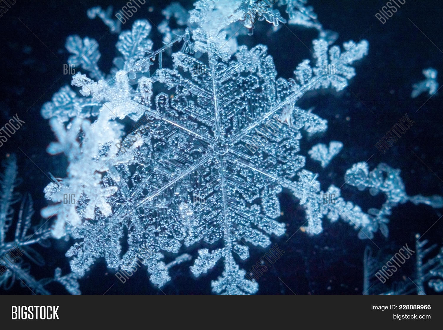 real snowflakes in the winter powerpoint template real snowflakes