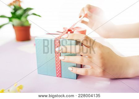 Close-up Of Female Hands Holding A Present. Gift A Present. Flower In The Flower Pot. Present Near L