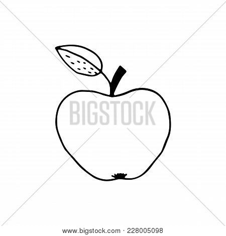 Linear Cartoon Hand Drawn Apple. Cute Vector Black And White Doodle Apple. Isolated Monochrome Apple