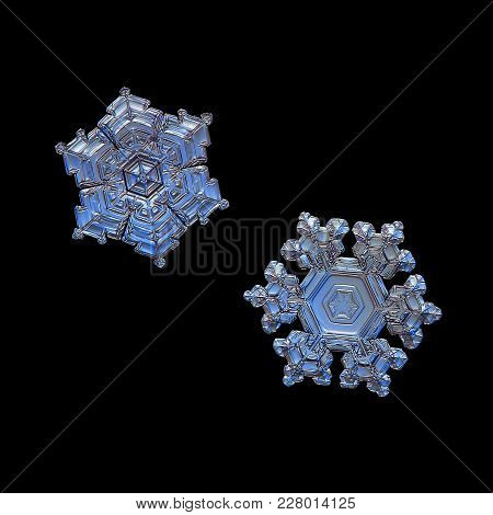 Two Snowflakes Isolated On Black Background. Macro Photo Of Real Snow Crystals: Small Stellar Dendri