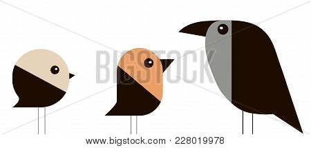 Sparrow, Bullfinch And Crow In A Minimalist Style On White Background