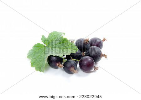 Black Currant Berry Isolated On White. A Bunch Of Black Currant..