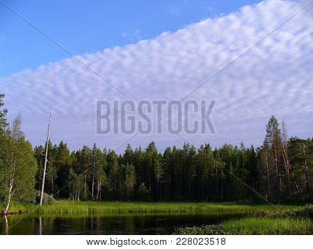 The White Clouds Of Unusual Form On A Half Tightened Blue Sky Above The Green Forest That Grows On T