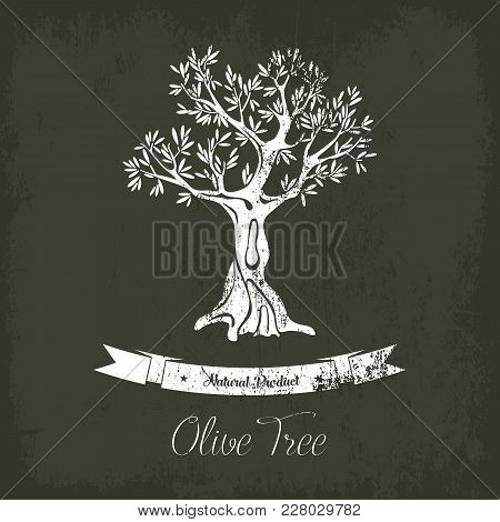 Natural Olive Oil Tree Logo For Olive Grove. Fruit Plant With Berry And Branches. May Be Used For Ol