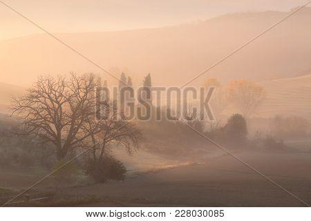 Sunrise At Countryside Landscape. Belvedere, Tuscany, Italy, Europe.