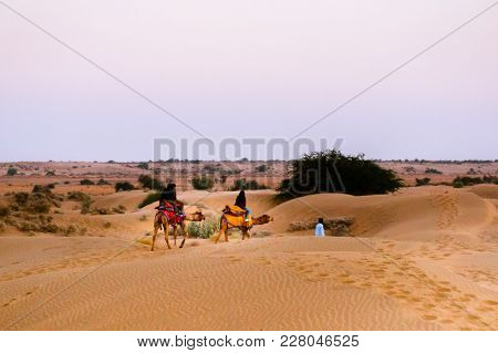 Bikaner, India - 29th Dec 2017: Camel Owner Taking A Camel Towards The Sunset In The Distance On The