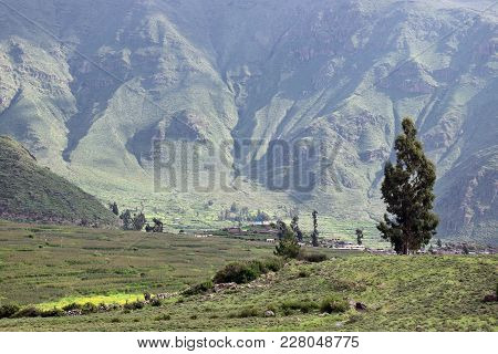 Scenery Near Cabanaconde A Small Village In The Colca Canyon In The Arequipa Region, Peru