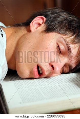 Student Sleep On The Book At The Home Closeup
