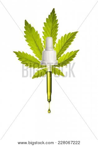 Pipette with a droplet hemp oil on cannabis leaf background