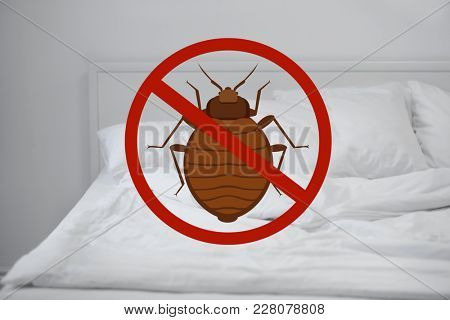 Stop bug sign and clean bed in room