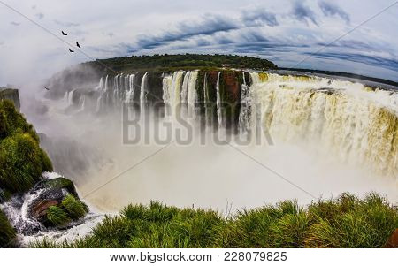 Andean condors fly above the roaring Iguazu waterfall. Grandiose waterfalls Iguazu in the rainy season - the Devil's Throat. Concept of active and photographic tourism