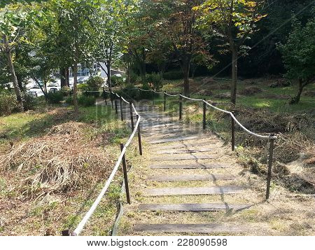 View Of Wooden Stairs With A Rope On A Mountain With Small Foliage And Meadows......outdoor Stairs I