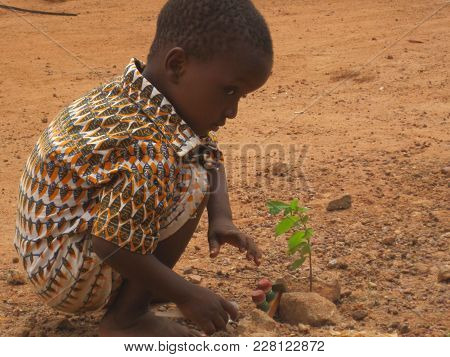 Ouagadougou/ Burkina Faso  - 7/20/2009: Unidentified Child Planting Sampling On A Dusty, Red Street.
