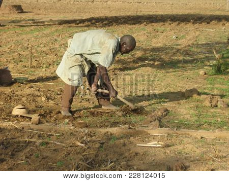 Gourcy/ Burkina Faso  - 7/20/2009: Unidentified Farmer Working Hard To Break Up Dry, Hard Ground.