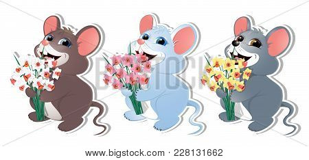 Baby Mouse With Early Daffodil. For Congratulations On Holidays March 8, Birthday, Anniversary. For