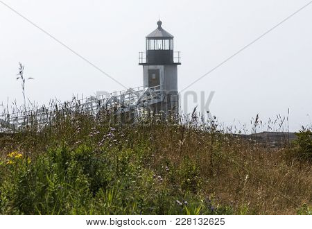 The Marshall Point Lighthouse In Maine With Fog Over The Water And Tall Grass, Plants And Fowers In