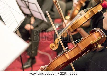 Detail Of Violin Being Played By A Musician.