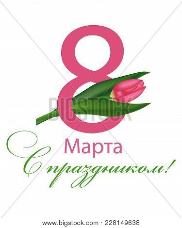 March 8 International Women's Day With Tulips. Number With The Flower And The Text In Russian With T
