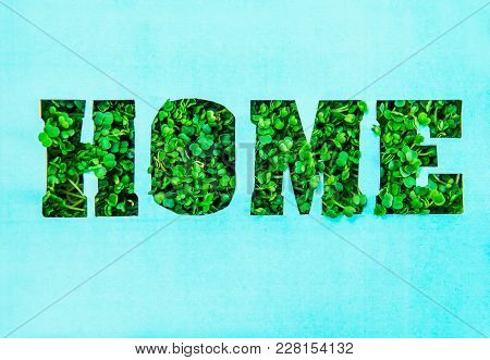 Creative Concept With Turquoise Paper Blank With Outline Lettering Home In Green Fresh Grass Sprouts