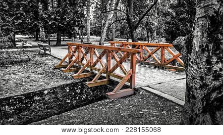 There Is A Bridge In The Park That Interrupts The Harmony, Dramatic Mood, Unique Coloring