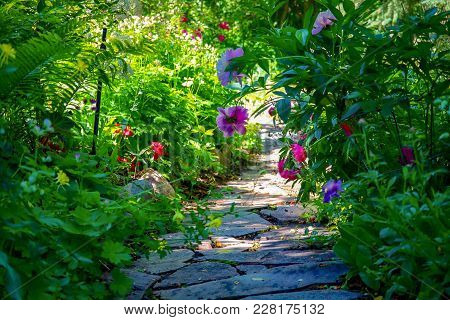 Colorful Flowers Blooming Along A Beautiful Stone Path In A Public Park With Lush Foliage And Green
