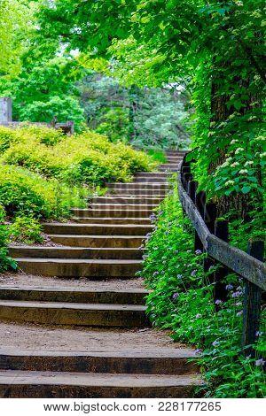 Stone Stairway At A Wildflower Garden In Summer