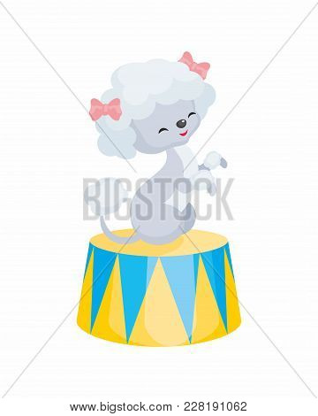 Vector Image Of A Trained Circus Animal In Cartoon Style. Colorful Illustrations Isolated On White B