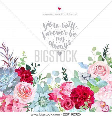 Pink Roses, Hydrangea, Burgundy Red Dahlia, Orchid, Brunia, Eucalyptus, Echeveria Succulents, Agonis