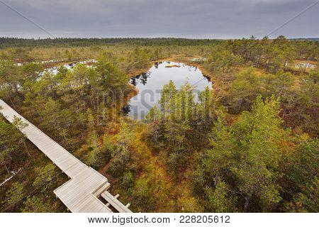 Lahemaa National Park In Estonia. Tallin, Estonia.