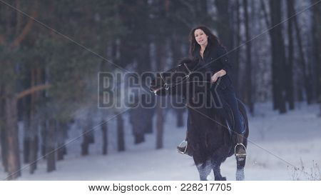Beautiful Longhaired Woman Riding A Black Horse Through The Snow In The Forest, Stallion Prancing, T