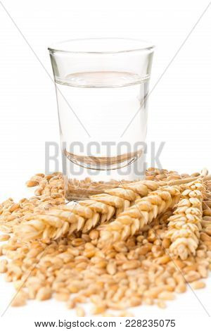 German Hard Liquor Korn Schnapps In Shot Glass With Wheat Grains And Ears Over White Background