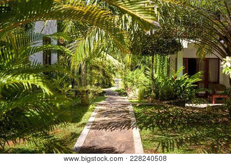 Natural Landscaping With The Stone Path In A Tropical Hotel. Landscaped Garden In A Tropic. Scenic P