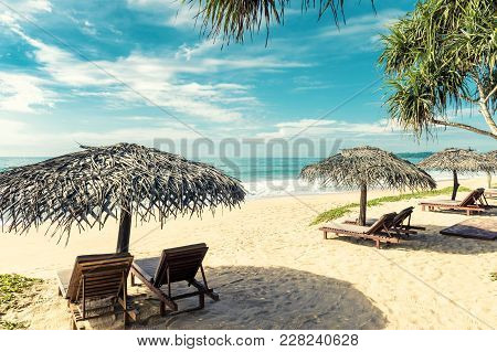 Beach Beds With Umbrellas On The Tropical Beach In Sri Lanka. Scenic View Of A Sand Beach With Palms