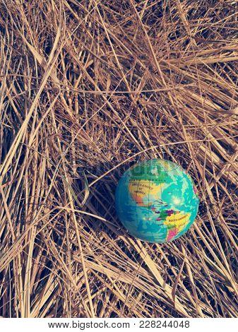 Globe ball on dry straw
