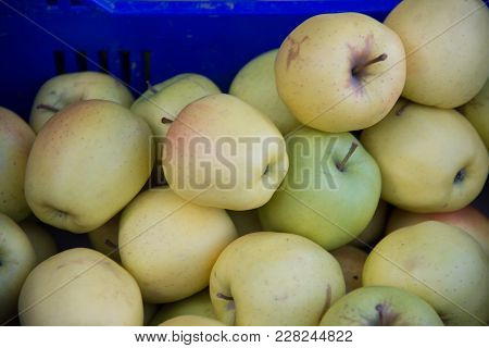 Food Fruit Yellow Apples, The Golden Delicius