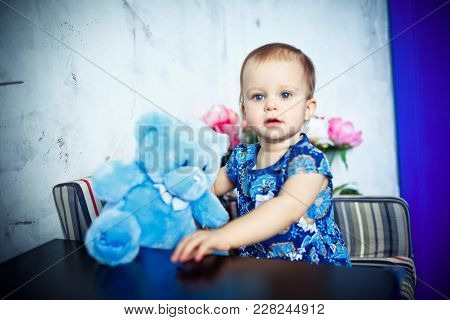 Lifestyle Portrait Of One Year Old Girl Holding Big Blue Teddy Bear And Looking At The Camera