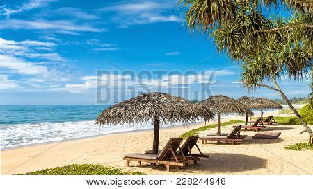 Beach Beds With Umbrellas On The Tropical Beach In Sri Lanka. Panoramic View Of A Sand Beach With Pa