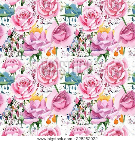Wildflower Pink Tea Rosa Flower Pattern In A Watercolor Style. Full Name Of The Plant: Rosa, Rose, H