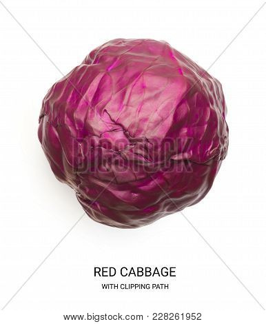 Whole Red Cabbage With Clipping Path